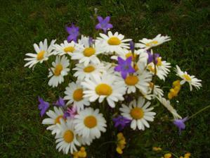 Nie je nič krajšie,ako sa prebehnút po lúke a natrhat si náruč lúčnych kvetov
