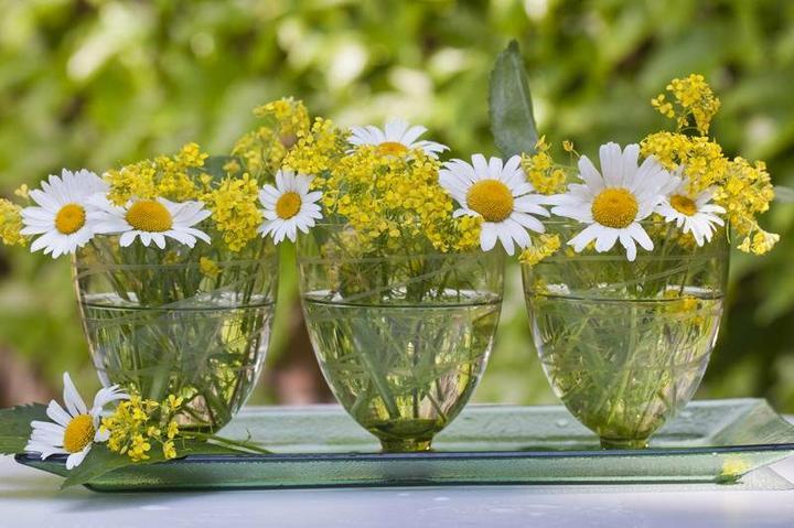 Dekorácie s lúčnymi kvetmi - Obrázok č. 14