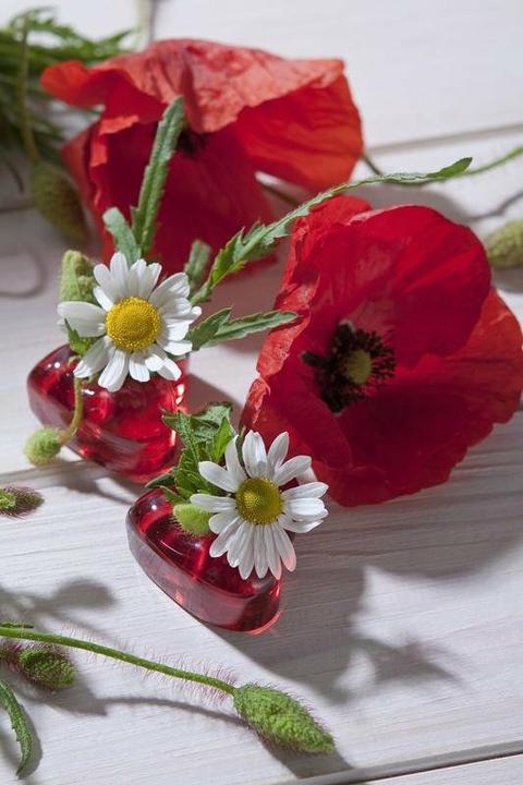 Dekorácie s lúčnymi kvetmi - Obrázok č. 15