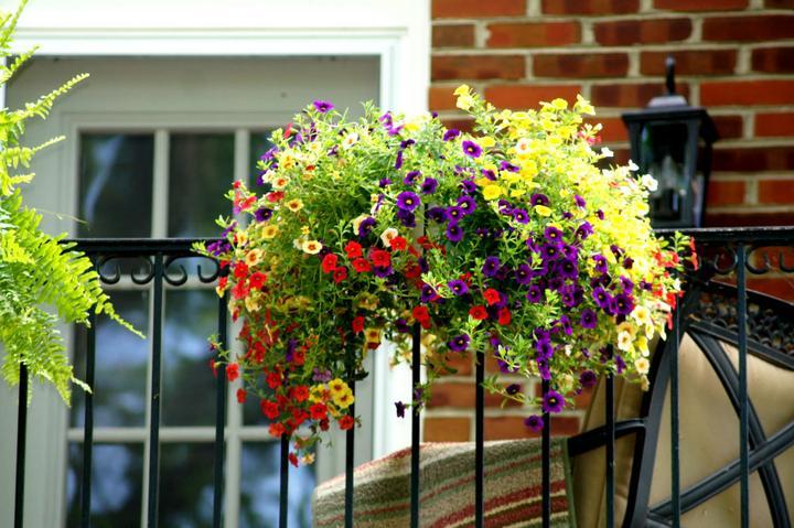 Balkonové a terasové zátišie - Obrázok č. 82