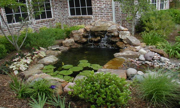 Voda v záhrade - Obrázok č. 162
