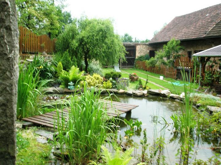 Voda v záhrade - Obrázok č. 170
