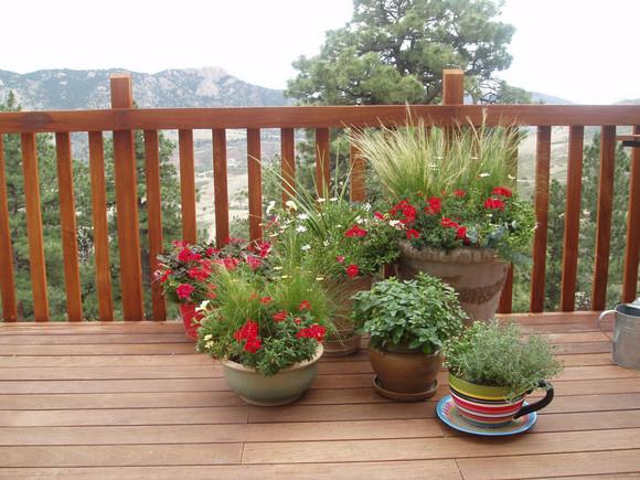 Balkonové a terasové zátišie - Obrázok č. 92