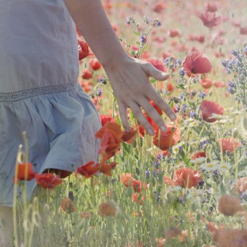 Dekorácie s lúčnymi kvetmi - Obrázok č. 52