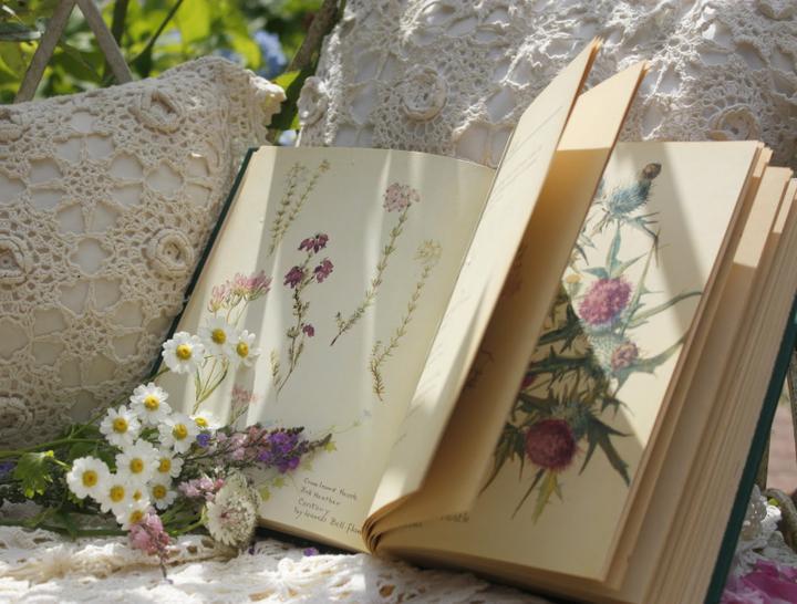 Dekorácie s lúčnymi kvetmi - Obrázok č. 63