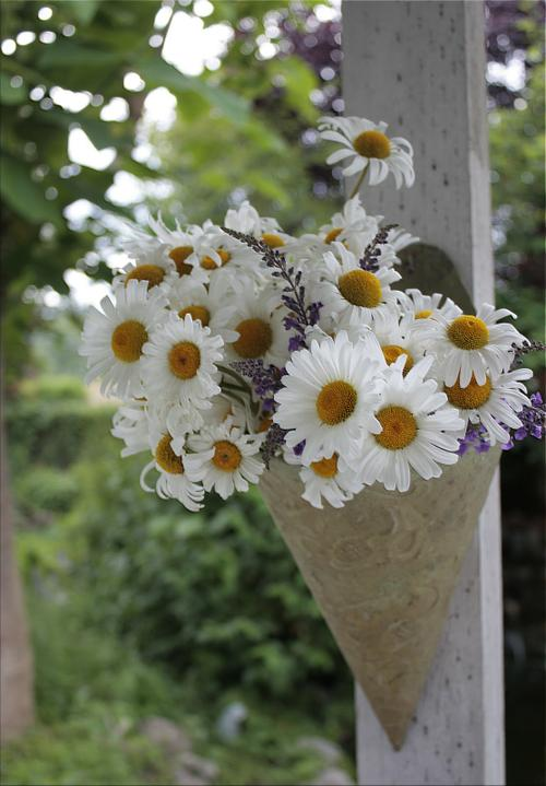 Dekorácie s lúčnymi kvetmi - Obrázok č. 73