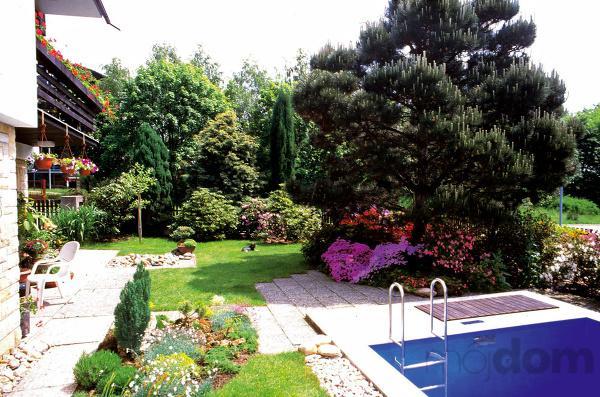Voda v záhrade - Obrázok č. 201