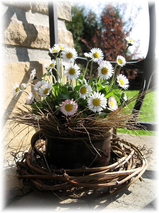 Dekorácie s lúčnymi kvetmi - Obrázok č. 87