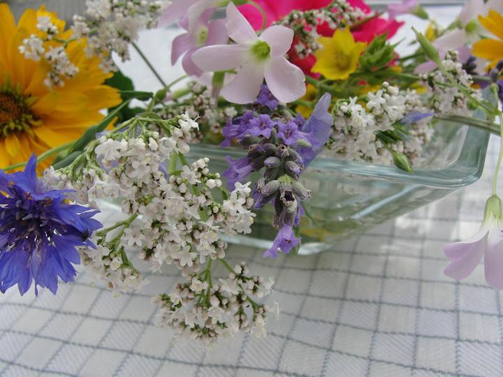 Dekorácie s lúčnymi kvetmi - Obrázok č. 95