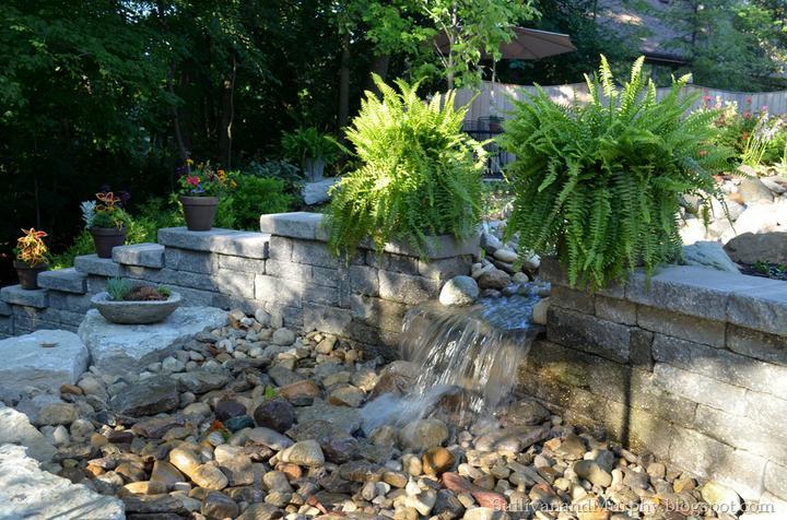 Voda v záhrade - Obrázok č. 173