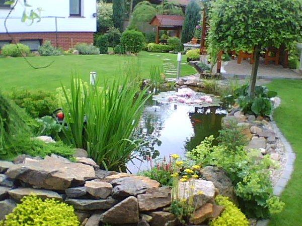 Voda v záhrade - Obrázok č. 176