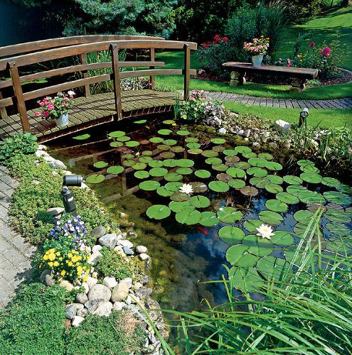 Voda v záhrade - Obrázok č. 179