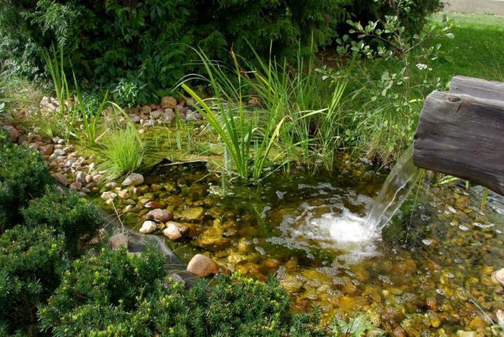 Voda v záhrade - Obrázok č. 199