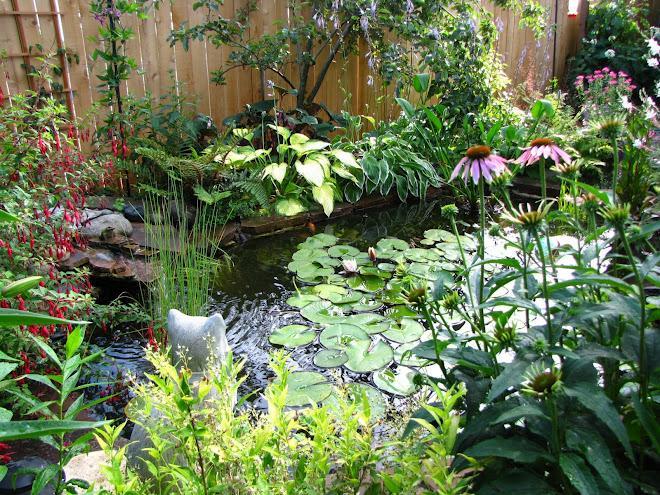 Voda v záhrade - Obrázok č. 200