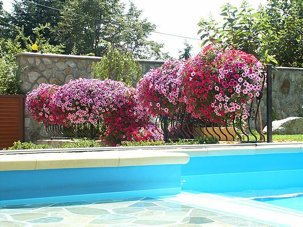 Voda v záhrade - Obrázok č. 211