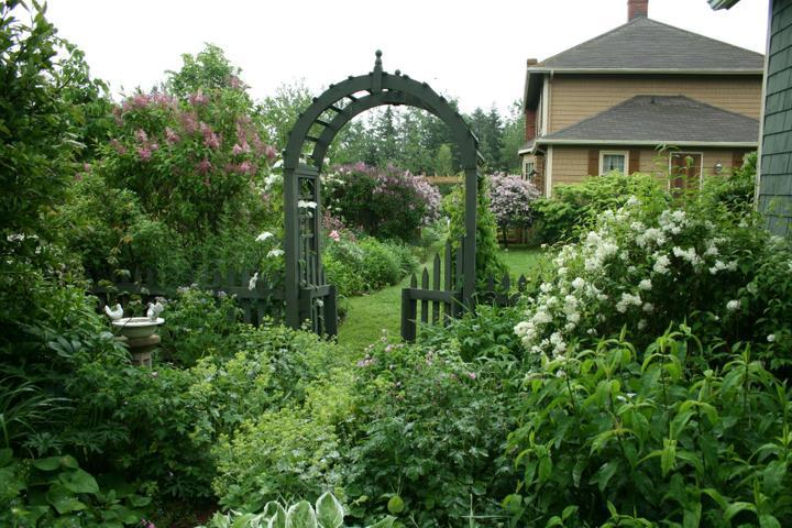 Krása divokej záhrady - Obrázok č. 2