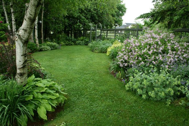 Krása divokej záhrady - Obrázok č. 4