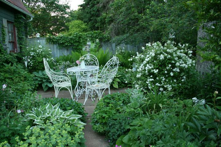 Krása divokej záhrady - balzam na dušu a tá zelená aj na oči