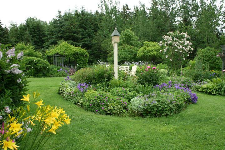 Krása divokej záhrady - Obrázok č. 7