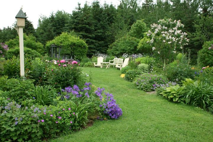 Krása divokej záhrady - Obrázok č. 8