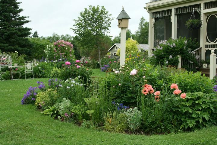 Krása divokej záhrady - Obrázok č. 9