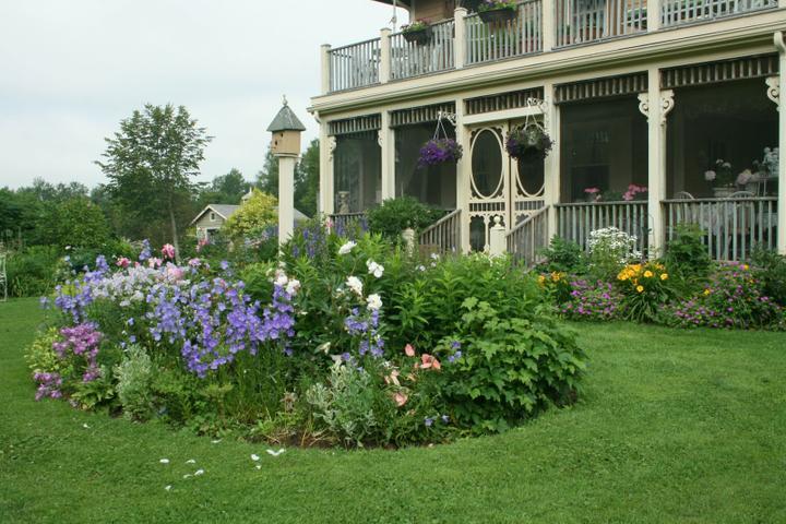 Krása divokej záhrady - Obrázok č. 10
