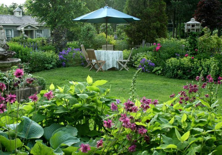 Krása divokej záhrady - Obrázok č. 11