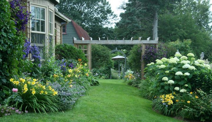 Krása divokej záhrady - Obrázok č. 15