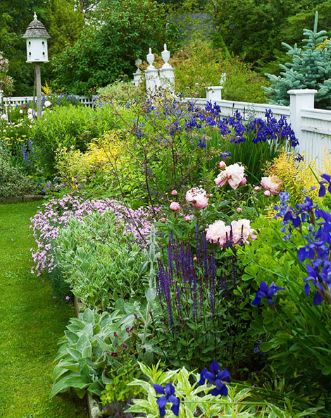Krása divokej záhrady - Obrázok č. 18