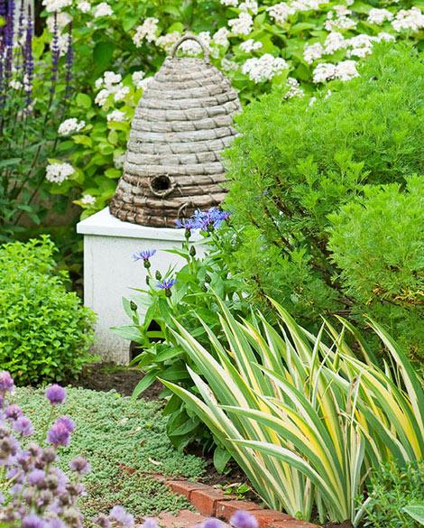 Krása divokej záhrady - včielky by nemali chýbat