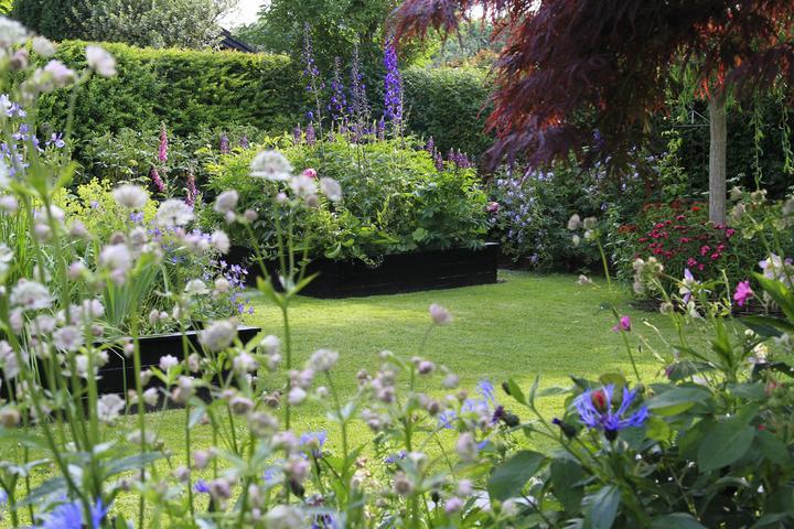 Krása divokej záhrady - Obrázok č. 23