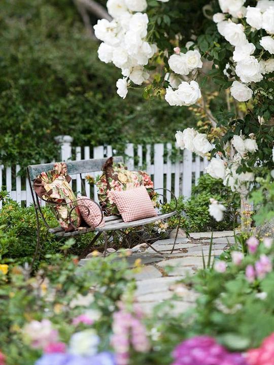Krása divokej záhrady - v nádhernej voni si nikto neodmietne posediet