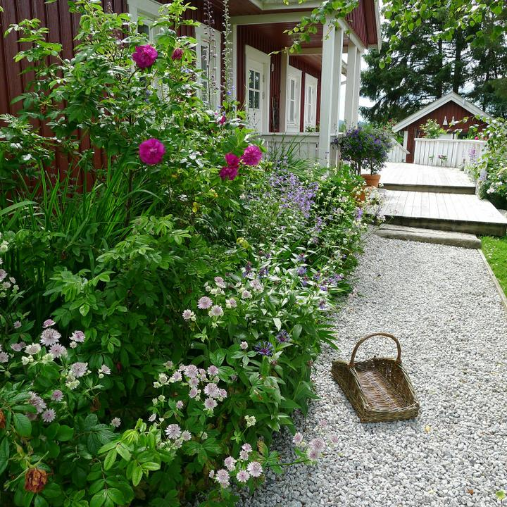 Krása divokej záhrady - Obrázok č. 40