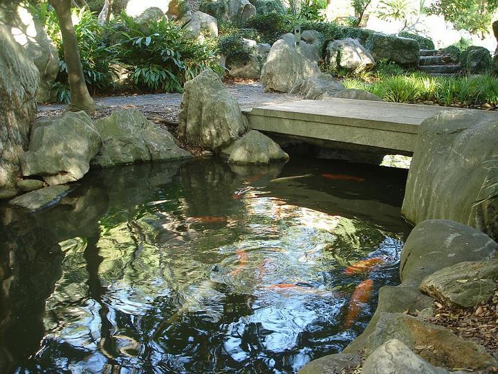Voda v záhrade - Obrázok č. 215