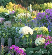 rozžiarená letná záhrada