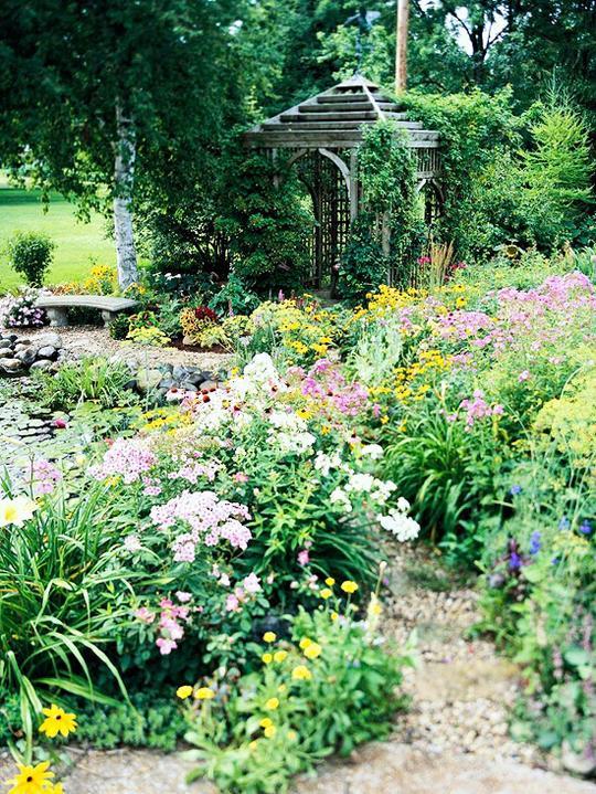 Krása divokej záhrady - Obrázok č. 53