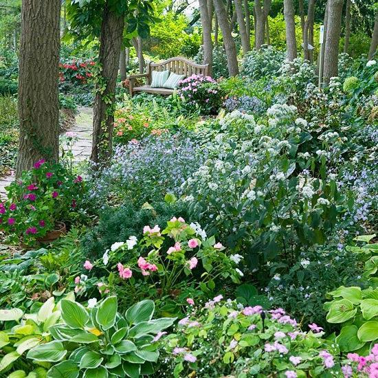 Krása divokej záhrady - Obrázok č. 55