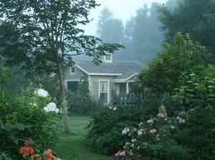 záhrada može byt súčastou lesa