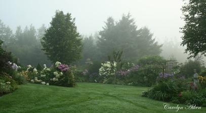 trávu osvieži ranná rosa