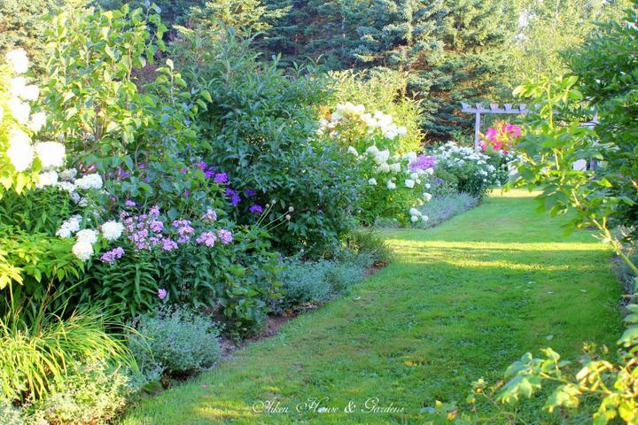 Krása divokej záhrady - Obrázok č. 65