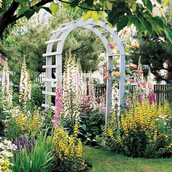 Krása divokej záhrady - Obrázok č. 88