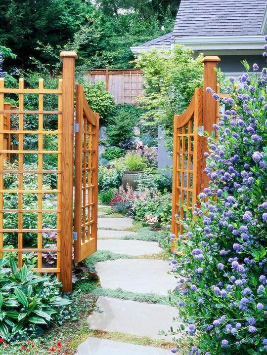Krása divokej záhrady - Obrázok č. 89
