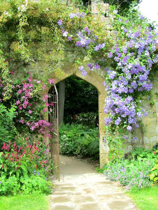 Krása divokej záhrady - Obrázok č. 95