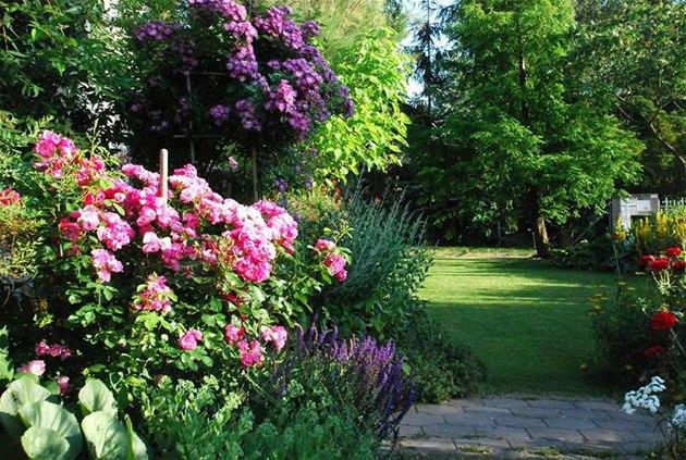 Krása divokej záhrady - Obrázok č. 102