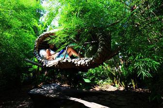 to musí byt nádherný pocit,takto si čítat a snívat v korune stromu