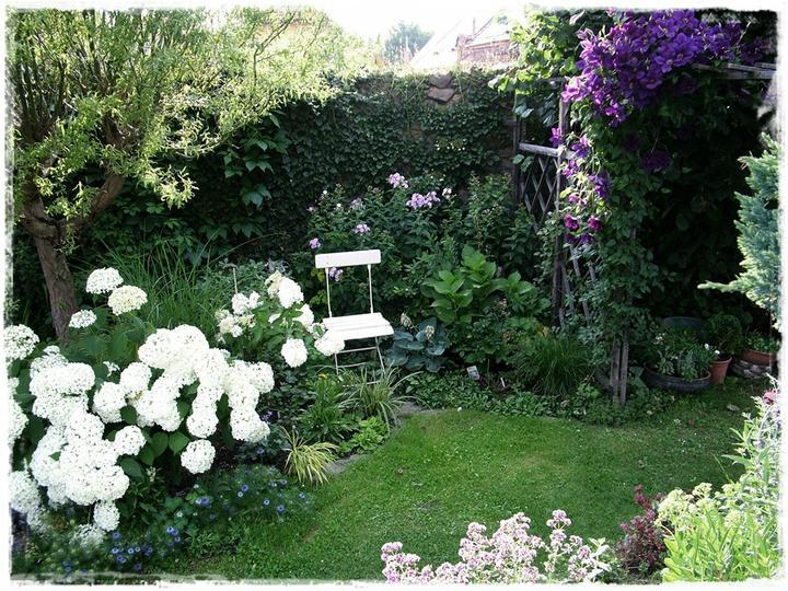 Krása divokej záhrady - Obrázok č. 128