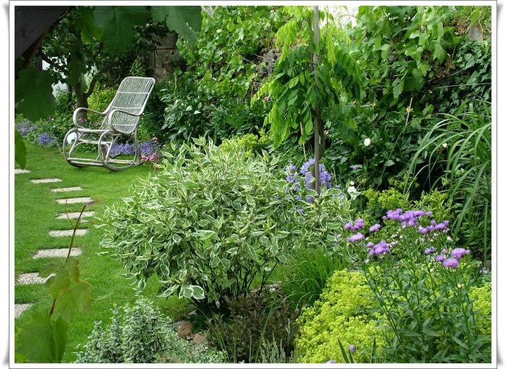 Krása divokej záhrady - Obrázok č. 131