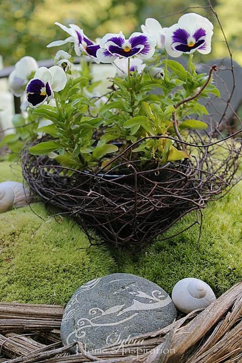 Krása divokej záhrady - krásna dekorácia záhrady