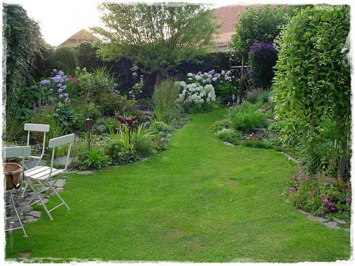 Krása divokej záhrady - Obrázok č. 134