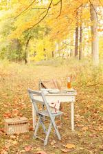 ešte sa určite nájde pár krásnych jesenných dní na piknik